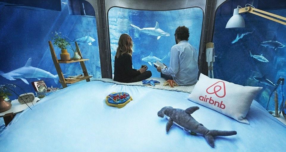Ночь с акулами в парижском океанариуме